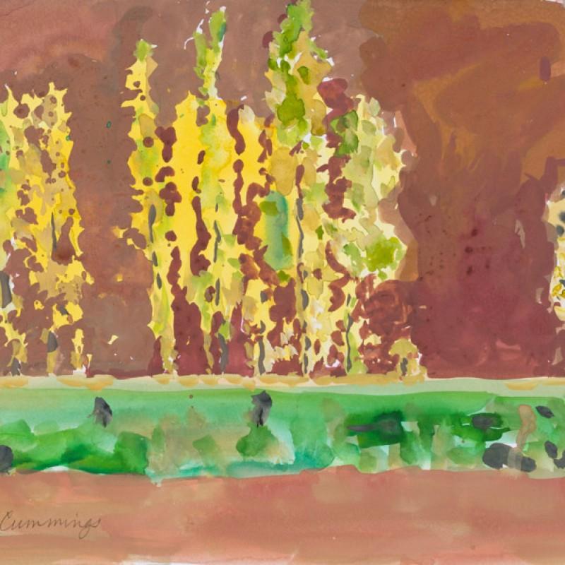 Tamtattouchte landscape 2