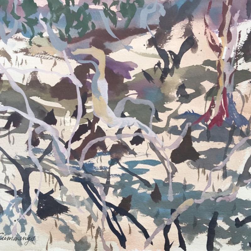 Kimberley Mangroves 4