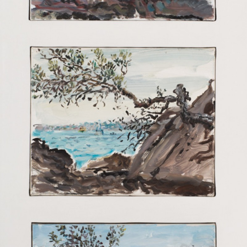 Banksia and rocks Nielsen Park