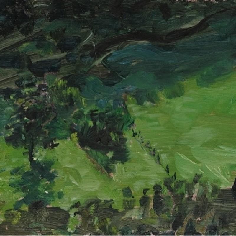 Hillside Shadows, Wattamolla