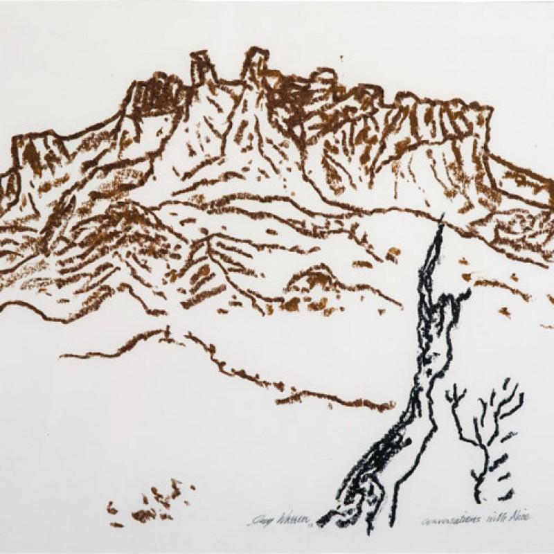 Hills at Alice 1