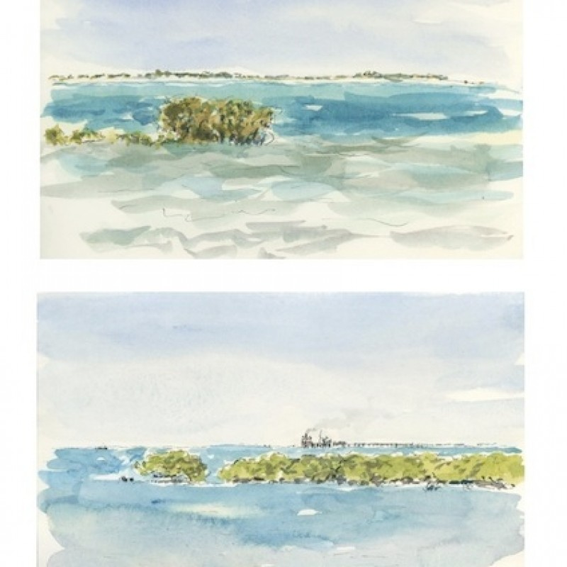 Mangroves, Broome [diptych]