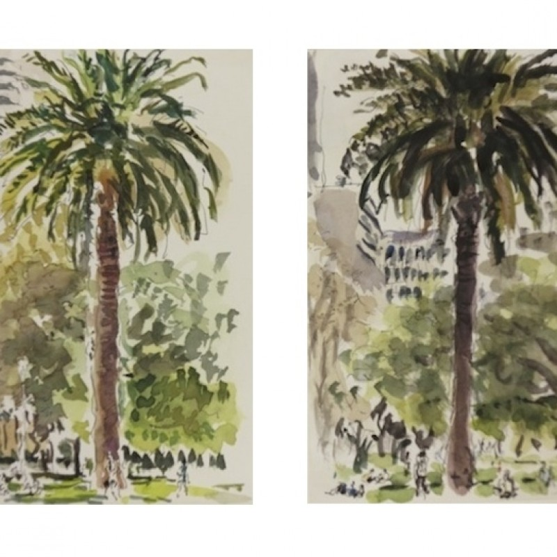 Palms, Hyde Park