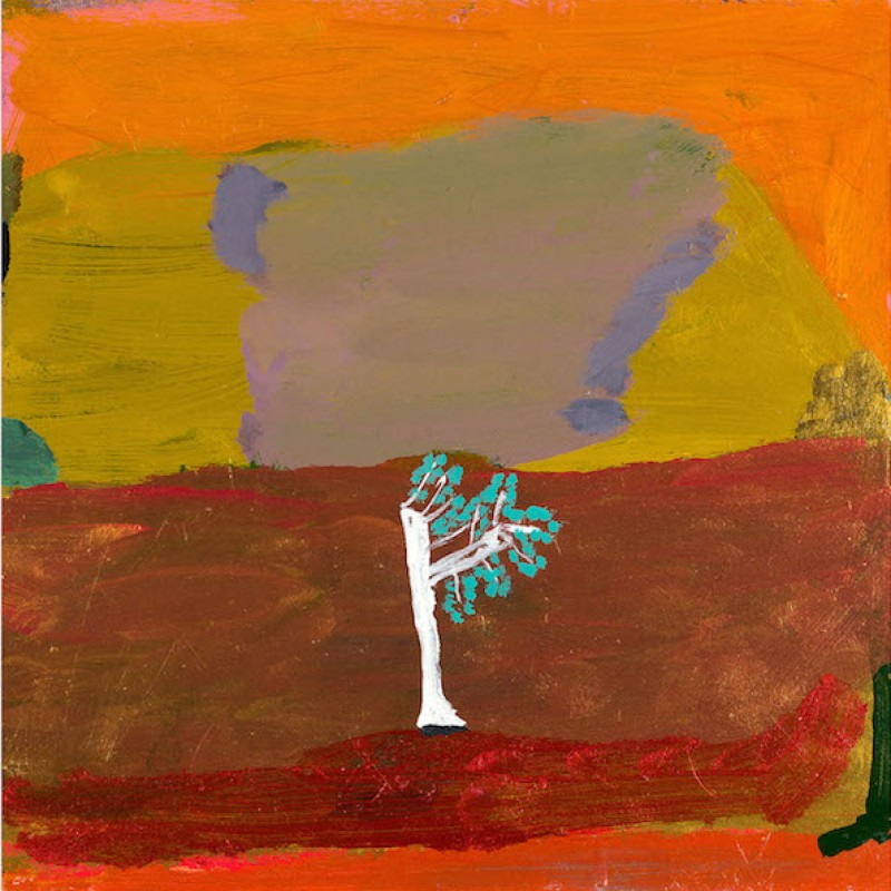 Kapook Tree & Cliff Kimberley