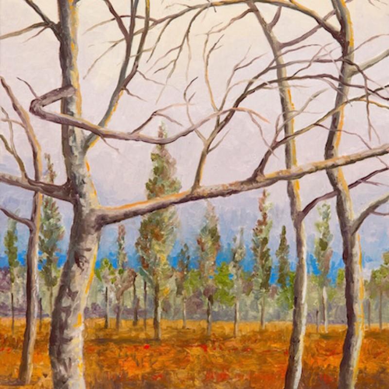 Four Trees Split View