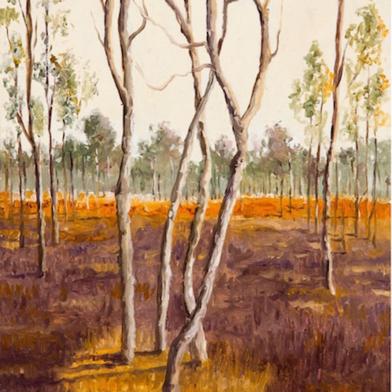 Intertwined/Four Trees, Kakadu