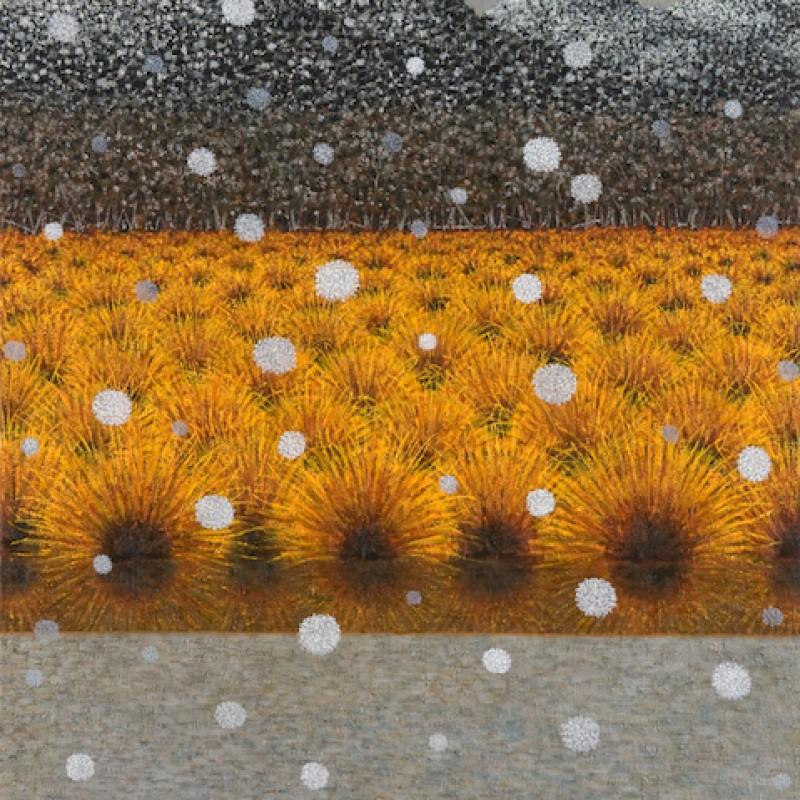 Snowfall King William Range