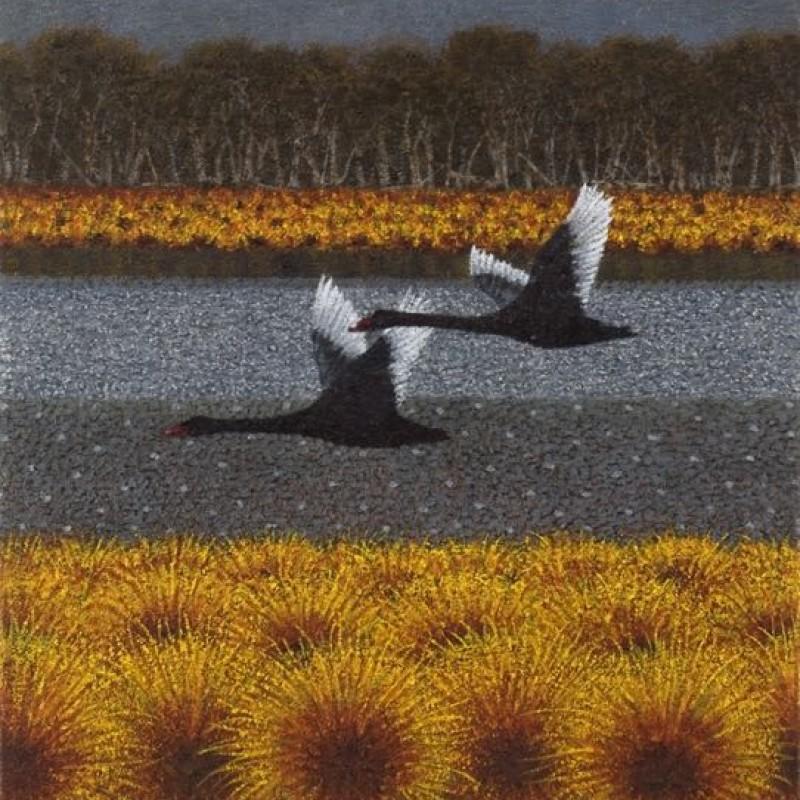 Black Swans in Flight