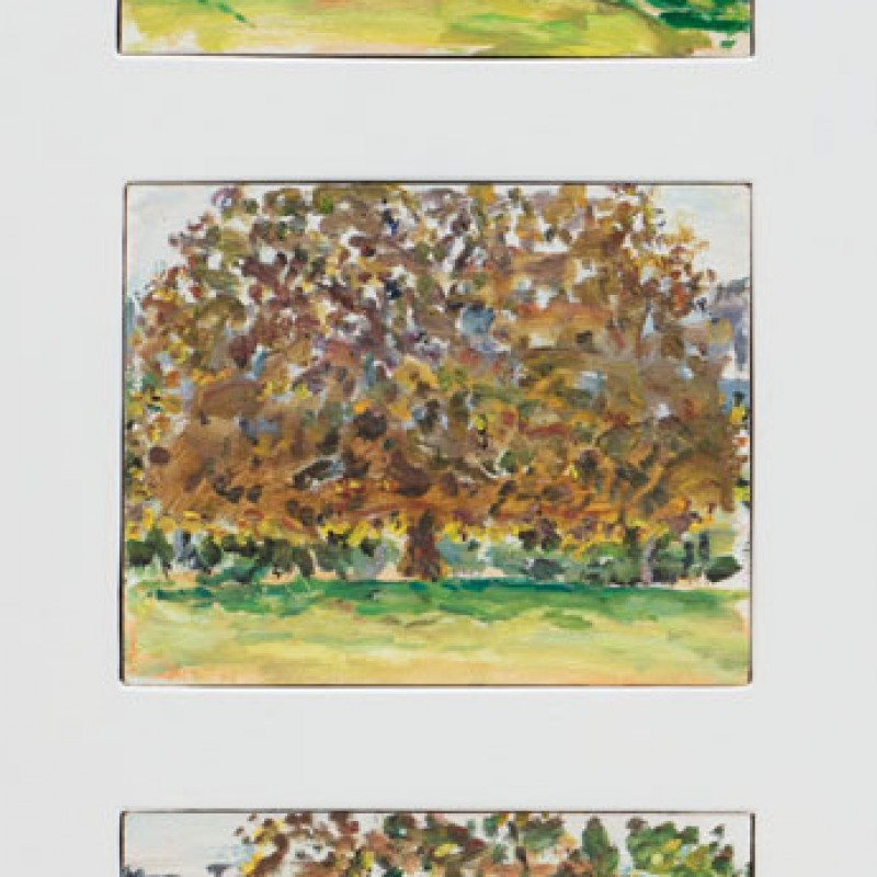 Autumn, Rushcutters Bay Park triptych