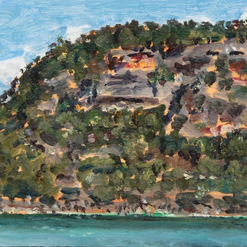 Muogamarra cliffs, Hawkesbury River I