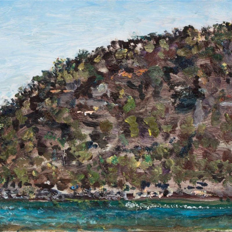 Muogamarra cliffs, Hawkesbury River IV