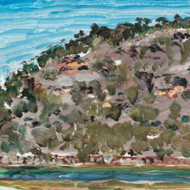 Muogamarra cliffs, Hawkesbury River II