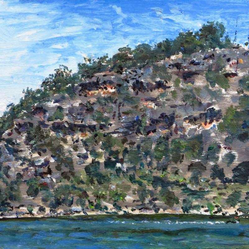 Muogamarra cliffs, Hawkesbury River V
