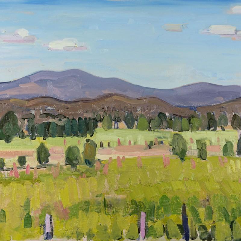 Brindabella landscape