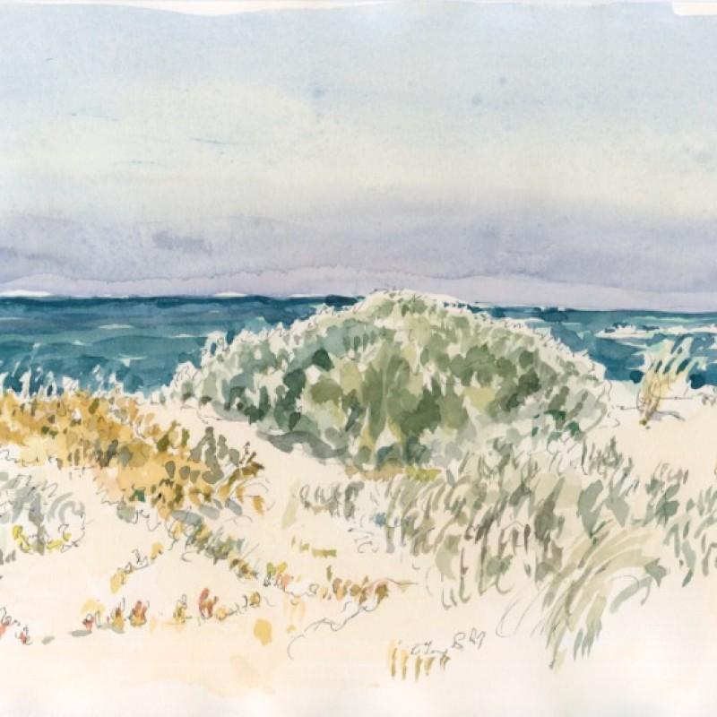 Dune flora Prevelly WA