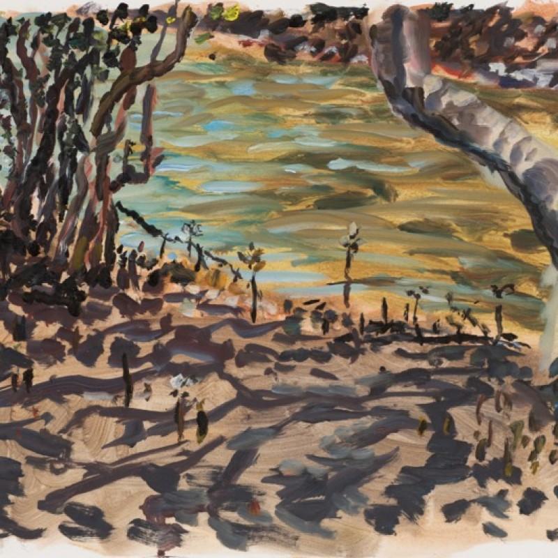 Mangroves, Smiths Creek