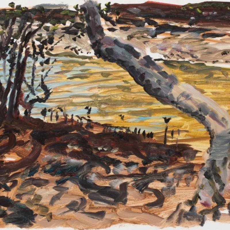 Mangroves, Smiths Creek II