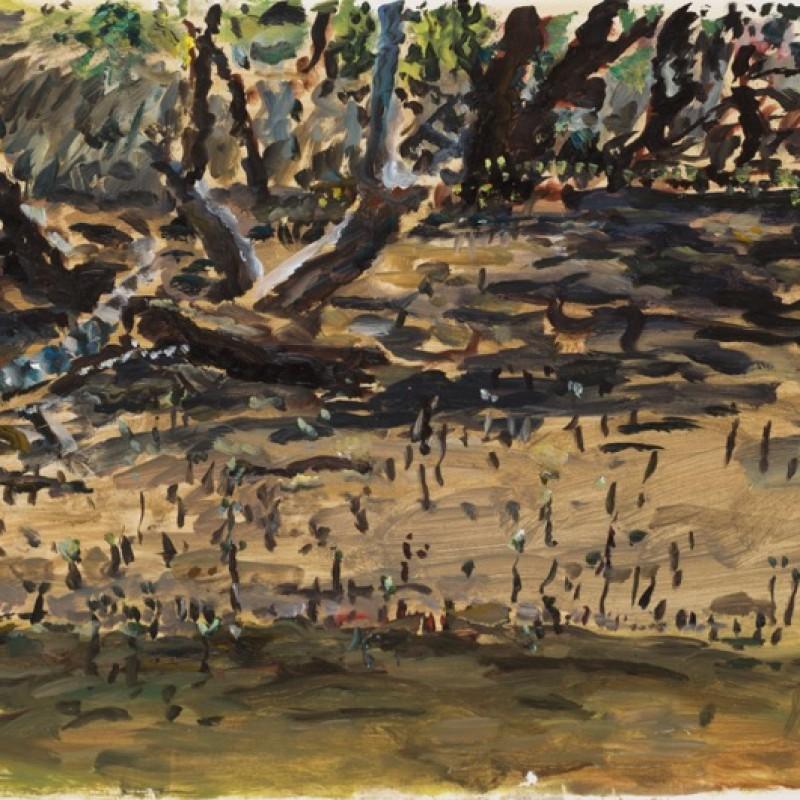Mangroves, Smiths Creek III