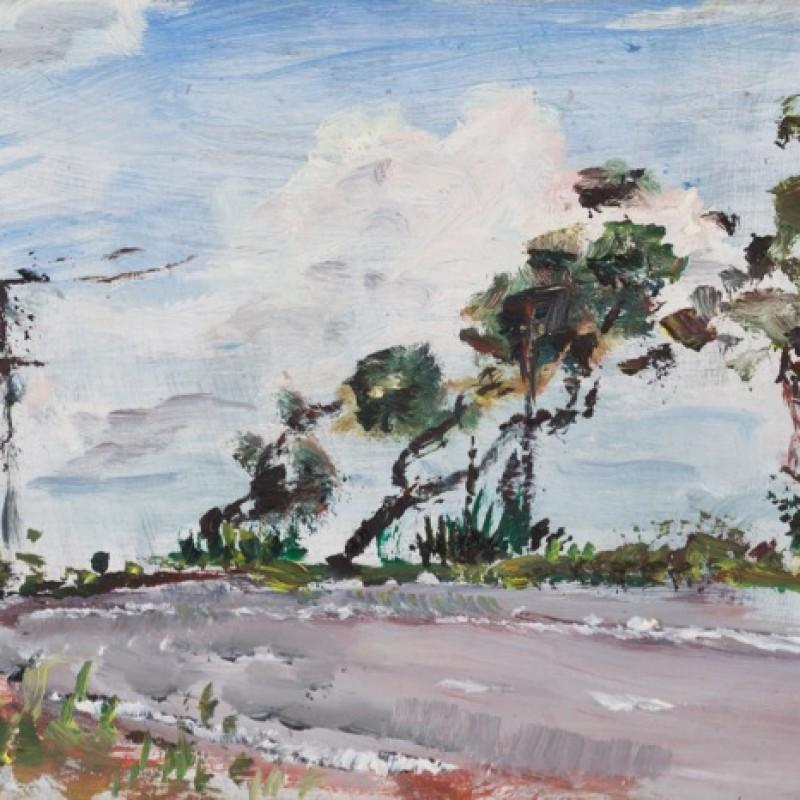 Roadside, Peats Ridge