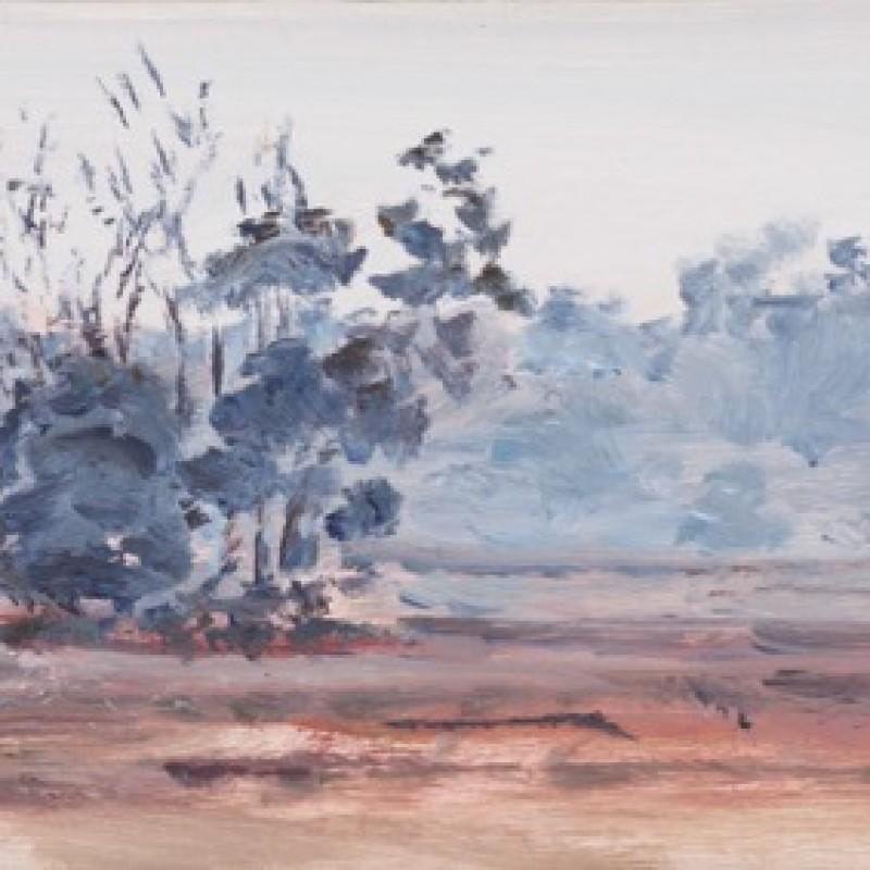 Smoky paddock, Parkes