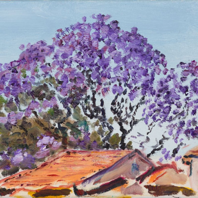 Jacaranda and red tiles, Strathfield