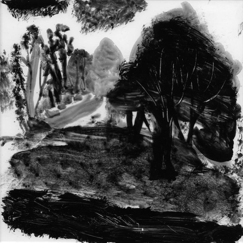 Mutawintji Trees (state 1)