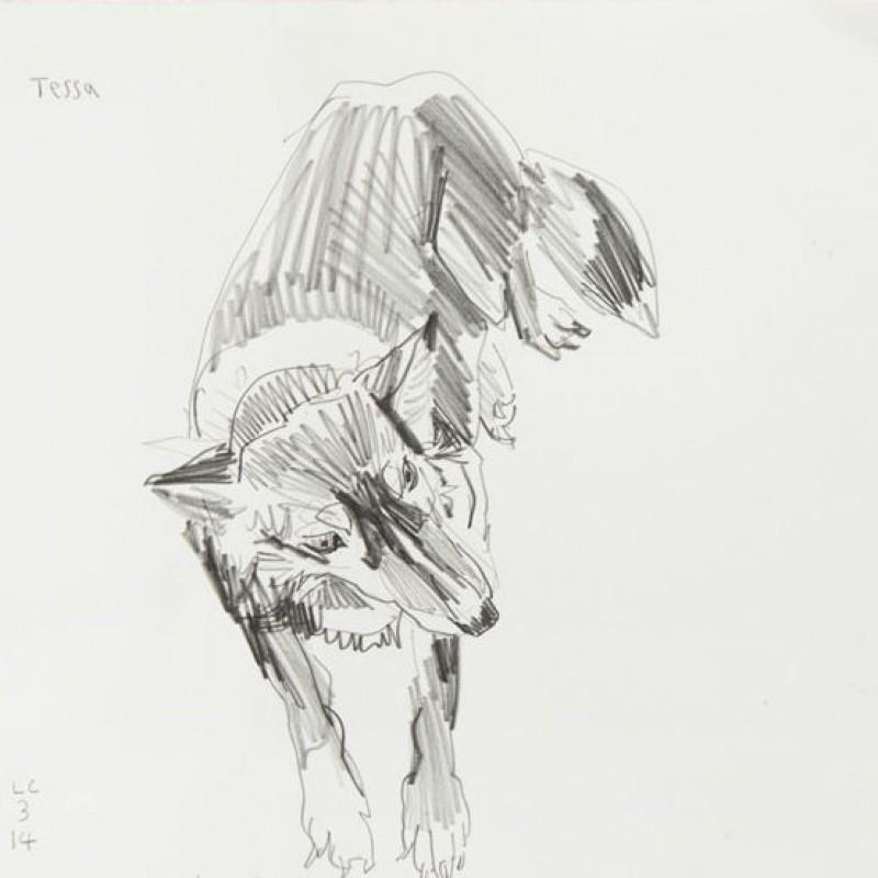 Tessa I