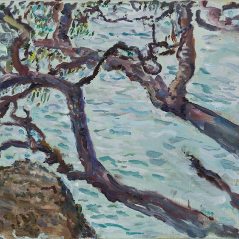 Overhanging branches, Chowder Head I