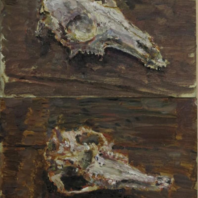 Wallaby skull & keys diptych