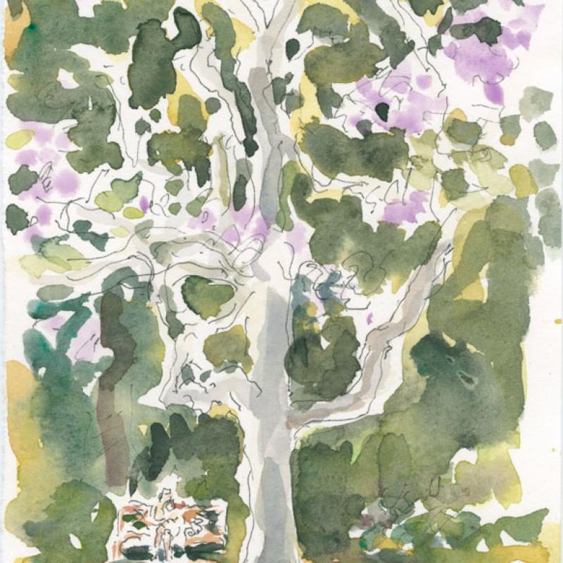 [Detail] Jacaranda, Botanical Gardens triptych