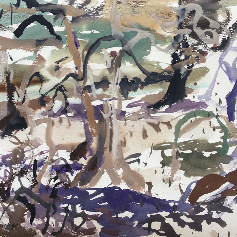 Kimberley Mangroves 2