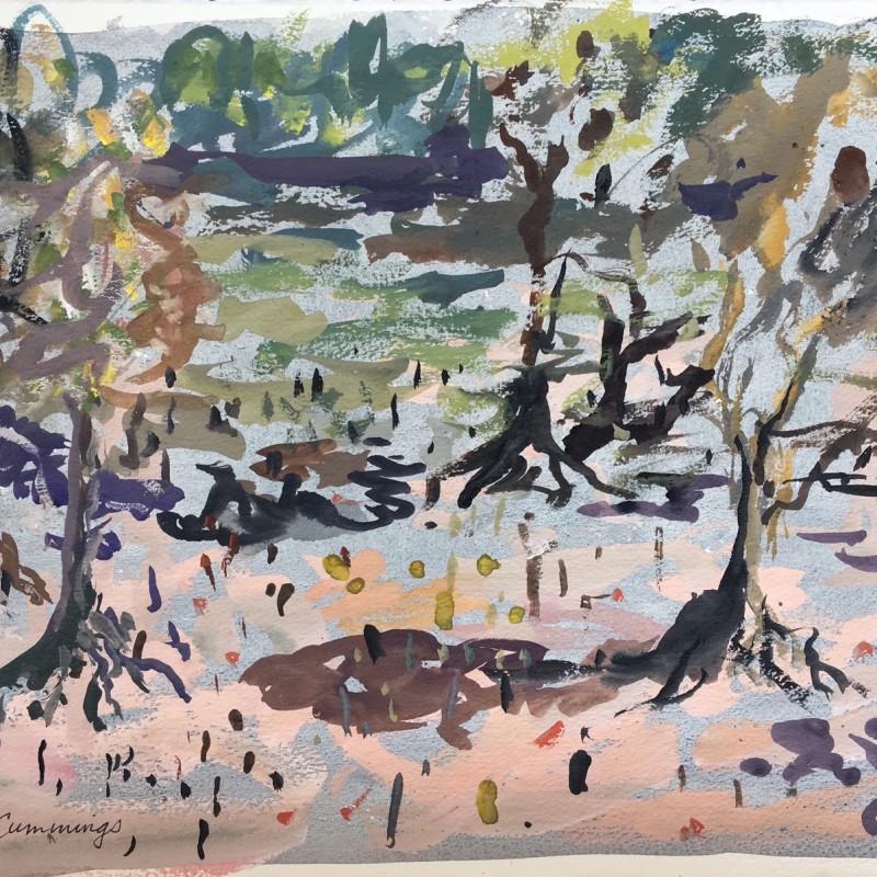 Kimberley Mangroves