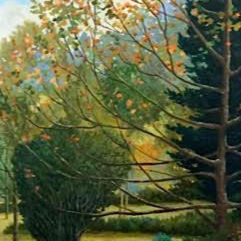 Autumn garden Springwood May