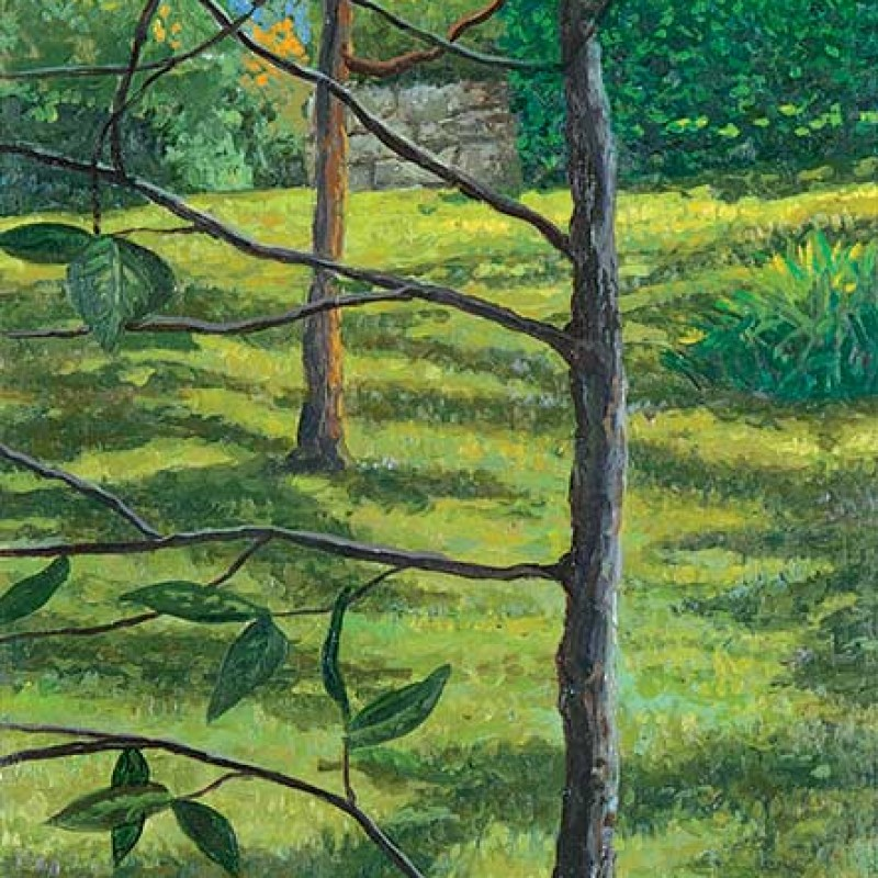 The handkerchief tree Hillston