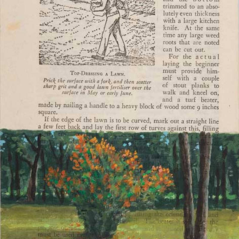 Autumn bush Hillston page 94