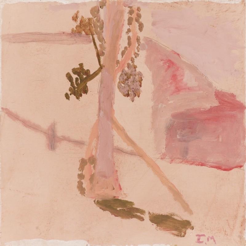 Pink at midday