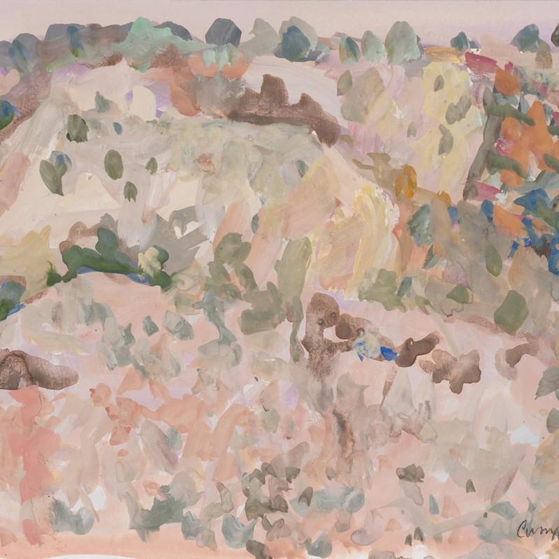Bleached hillside N'Dhala Gorge