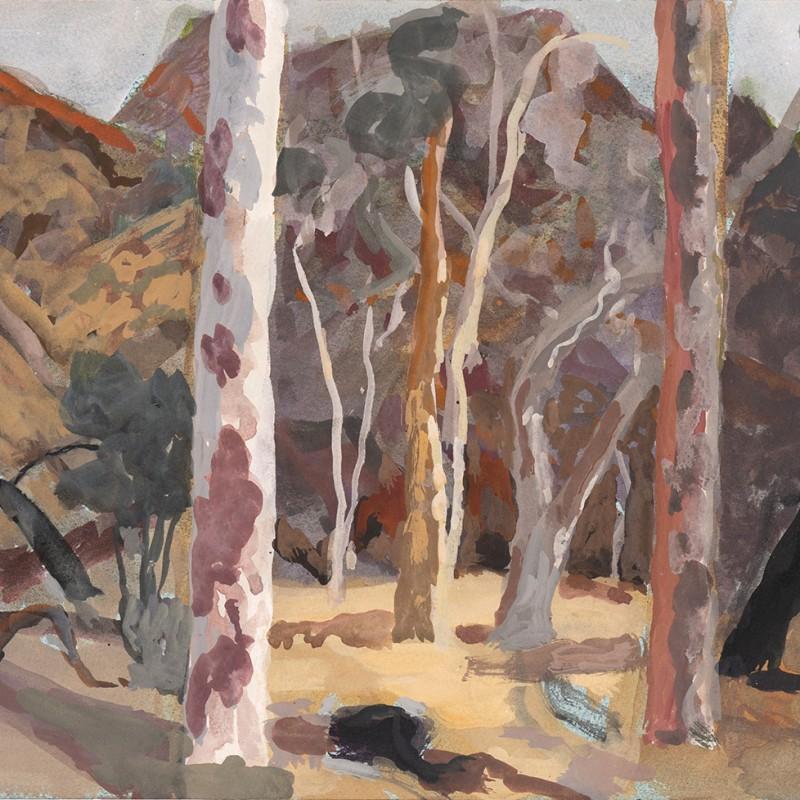 7 Sisters creek bed N'Dhala Gorge