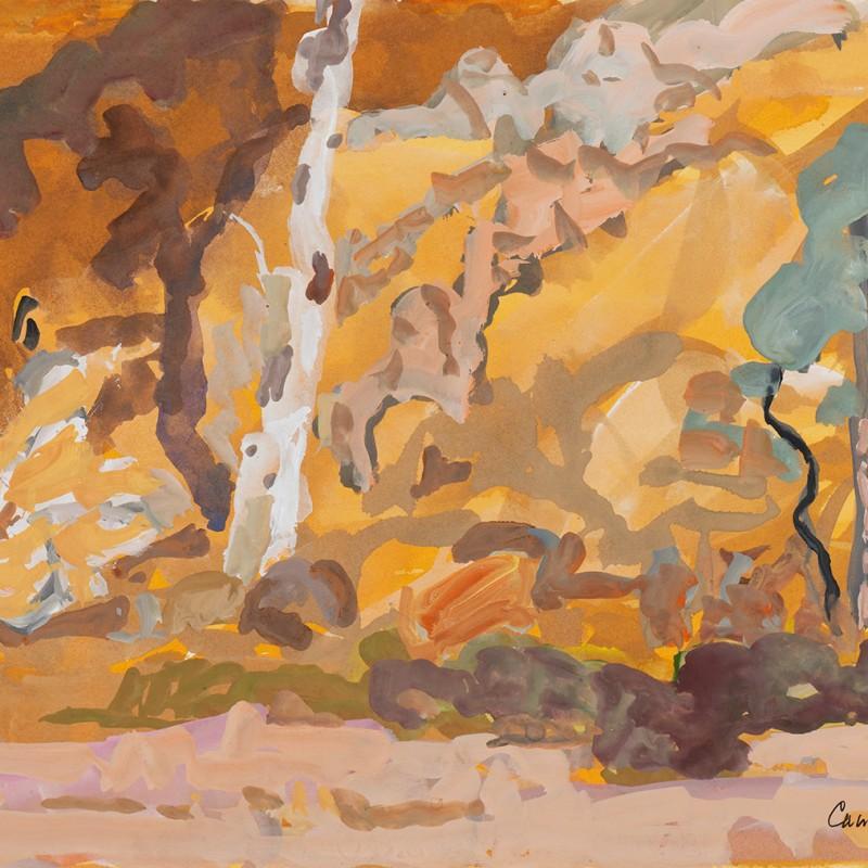 River bed N'Dhala Gorge